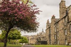 A view from Greyfriars Kirkyard. In spring, Edinburgh, Scotland Royalty Free Stock Photography
