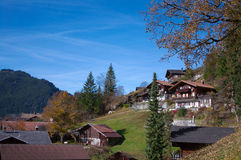 View on Grindelwald Royalty Free Stock Images