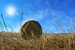 View from the ground on a straw bales with sun. View from the ground on a straw bales with straws , sun and blue sky Royalty Free Stock Photos