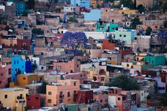 View of Guanajuato, Mexico. View looking down at the colorful houses of the Spanish colonial highland town of Guanajuato, Mexico Royalty Free Stock Image