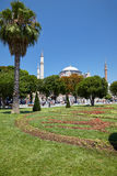 View of Hagia Sophia through the lawns and the trees of Sultan A Royalty Free Stock Photo