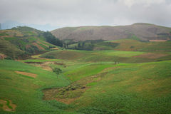 View of Hagiang highland Stock Photography