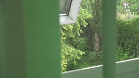 View from the half-open window through the developing blinds to rain and wind. Outside stock video