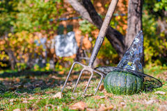 View of Halloween Pumpkins, witch's hat and rake Stock Photo