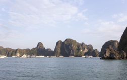 View of the Halong Bay full of boat cruising Stock Photos