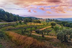 View on Fonterutoli on sunrise. It is hamlet of Castellina in Chianti in province of Siena. Tuscany. Italy royalty free stock photo