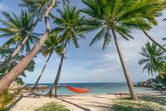 View of the hammock between the palm trees on the beach - landscape Royalty Free Stock Photo