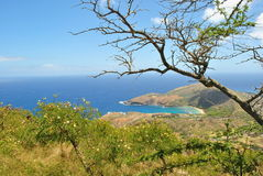 VIEW OF HANAUMA BAY IN OAHU, HAWAII royalty free stock photography