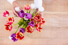 View of hands holing flower Royalty Free Stock Images