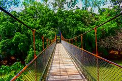 View of the hanging wooden bridge with lush greenery over the river. View hanging bridge top  lush greenery over river scenic nature journey destination stock photography