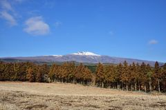 View of Hanla mountain in Jeju Stock Photography