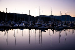 View of harbour and marina at Brentwood Bay, BC at sunset Stock Images