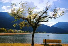 View of harrison hot springs Royalty Free Stock Image