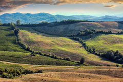 View of after harvest fields, Toscany Stock Photography