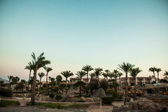 View of hauses villas and palms park on sunset royalty free stock photos