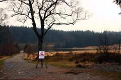 View of the Hautes Fagnes in Belgium, end of winter. Seasonal, nobody Stock Photos
