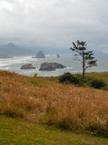 View of Haystack on the Oregon Coast Royalty Free Stock Image