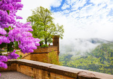 View in haze from Hohenzollern castle with flower Royalty Free Stock Photos