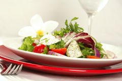 View of Healthy Salad Royalty Free Stock Image