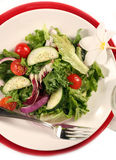 View of Healthy Salad on White Royalty Free Stock Image