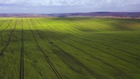 View from the height on rural landscape: green field and picturesque clouds in the sky stock footage