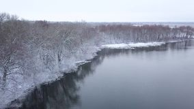 View from height to the winter forest covered with snow and standing on the river bank. Aerial view of the winter forest covered with snow and standing on the stock footage
