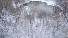 View from height to the winter forest covered with snow and standing on the river bank. Aerial view of the winter forest covered with snow and standing on the stock video