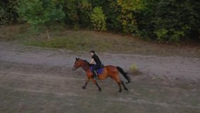 View from the height of woman riding a brown horse by gallop outdoors