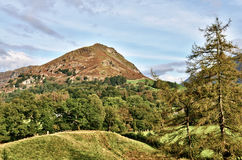 View of Helm Crag across a wooded landscape. Royalty Free Stock Photo