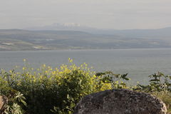 View of Hermon Mountain from Sea of Galilee Shore Royalty Free Stock Photo