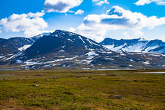 View of high mountains with snow, grass in foreground. View of high arctic mountains with snow and a glacier. Grass, small bushes, moss and scattered stones in Royalty Free Stock Photo