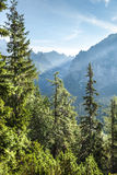 View of High Tatra Mountains from hiking trail. Royalty Free Stock Images