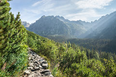 View of High Tatra Mountains from hiking trail Royalty Free Stock Photos