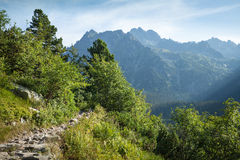 View of High Tatra Mountains from hiking trail. Stock Image