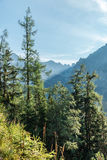View of High Tatra Mountains from hiking trail. Royalty Free Stock Photo