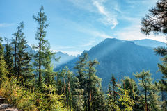 View of High Tatra Mountains from hiking trail. Royalty Free Stock Image