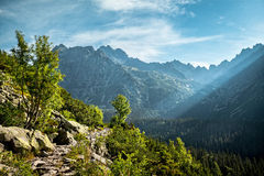 View of High Tatra Mountains from hiking trail. Stock Images
