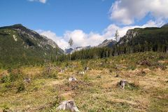 View of the High Tatras in Slovakia. With green field Royalty Free Stock Images