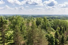 View from the high view tower to the green nature of Latvia. Separate trees in the foreground, next to the woodland with the countryside and on the horizon stock image