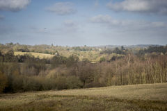 View of the High Weald Countryside Royalty Free Stock Image