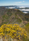 View from highest peak on Madeira Royalty Free Stock Photos
