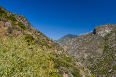 View at Highway 180, Kings Canyon National Park, California, USA Stock Photography