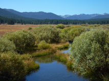 View from hike of Martis Creek Lake, near Truckee Stock Photo