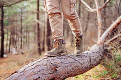 View of hiker legs on tree trunk Stock Image