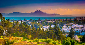 View from hill Byrsa with ancient remains of Carthage and landscape. Stock Photography