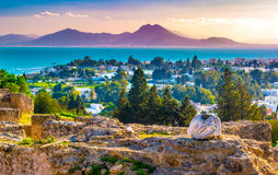 View from hill Byrsa with ancient remains of Carthage and landscape. Royalty Free Stock Images