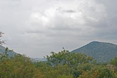 HILL AND CLOUDY SKY BEHIND GREEN VEGETATION. View of hill covered with vegetation behind green trees in the foreground in an African landscape under an overcast Stock Image