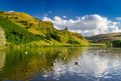 View of the hill reflected in a lake with birds Royalty Free Stock Photography