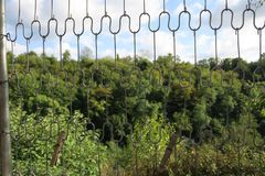 View on a hill through old bed spirals. A view on a hill with trees through old bed spirals stock image