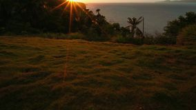 View from hill on tropical island on sunset, Philippines, Puerto Galera. Palm trees stock video